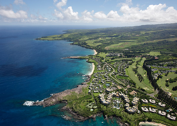 Kapalua Real Estate Listings