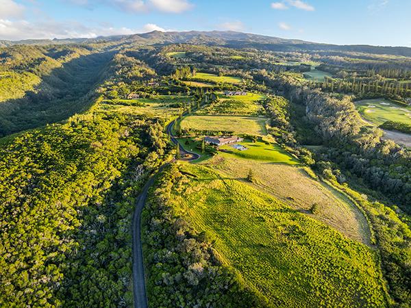 Honolua Ridge