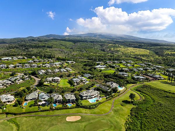 Pineapple Hill